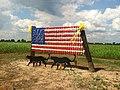 Cup Flag in Panther Burn, Mississippi.jpg