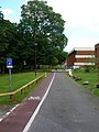 Cycle Path and Service Road, University of Sussex - geograph.org.uk - 521388.jpg
