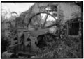 DETAIL OF CANE CRUSHER, DRIVE WHEEL - Estate Annaly, Sugar Mill, North Side, St. Croix, VI HAER VI,1-NORA,1-2.tif