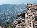 Dassies, Cape Town (P1050367).jpg