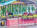 Daulatabad, Aurangabad - panoramio (436).jpg