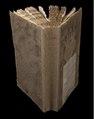 De Ambonse historie behelsende een kort verhaal der gedenkwaardigste geschiedenissen zo in vreede als oorlog voorgevallen Sedert dat de Nederlansche Oost-Indische Compagnie het Besit van Amboina geh, D H 567.pdf