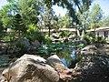 Deer Park Monastery lotus pond.jpg