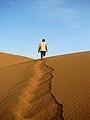 Desert Leader.jpg
