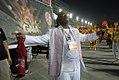 Desfile das escolas de samba do Rio de Janeiro de 2014.jpg