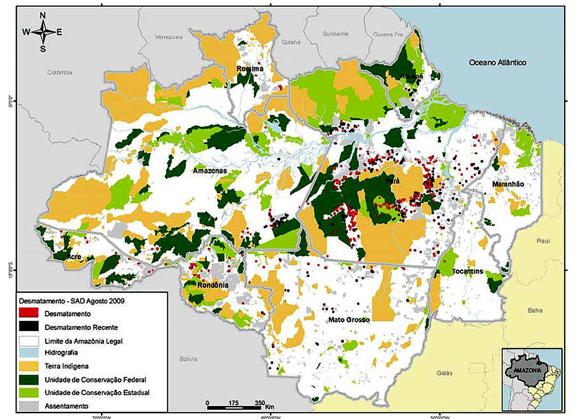 Desmatamento Na Amazônia Cai 11 E Atinge Menor Taxa Em 24