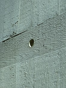 Detail of Concrete, showing marks of timber formwork, Clifton Cathedral