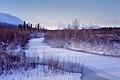 Dezadeash River and St. Elias Mountains (8715954833).jpg