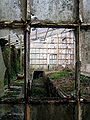 Dilapidated greenhouse.jpg