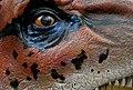 Dinosaur eye closeup (2070412197).jpg