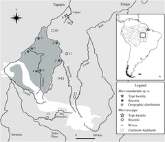 Distribution of Mico munduruku sp. n. and records of M. leucippe.png