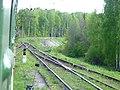 Dmitrovsky District, Moscow Oblast, Russia - panoramio (33).jpg