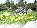 Dodona-Greece-April-2008-186.JPG