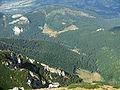 Dolina Miętusia a11.jpg