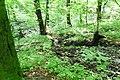 Dolny Sopot, Sopot, Poland - panoramio (52).jpg