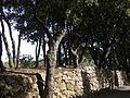 Domaine des Treilles (Var) 27.JPG