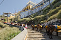 Donkey trail - Fira - Thira - to Mesa Gialos port - Santorini - Greece - 03.jpg