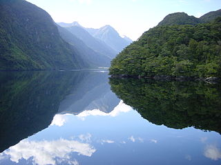 Doubtful Sound Fjord in New Zealand