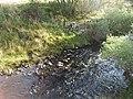 Downstream Allt Drimneach - geograph.org.uk - 1553796.jpg