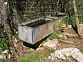 Drinking trough, Waddon - geograph.org.uk - 749231.jpg