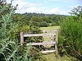 Dudwell Valley, South-west of Burwash - geograph.org.uk - 227487.jpg
