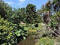 Dunedin Botanic Garden kz05.jpg