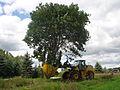 Dutchman 95 Tree Spade on Loader.jpg