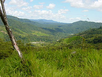 Sangay - Subtropical rainforest in the Sangay National Park