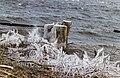 Een ijzige wind waait over de Put van Nederhorst 03.jpg