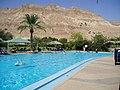 Ein Gedi Guesthouse Pool - panoramio.jpg