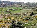 El Mokrani, Algeria - panoramio (10).jpg