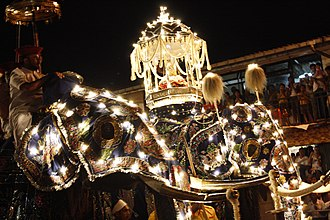 Kandy Esala Perahera - Ceremonial Tusker carrying the Sacred Casket
