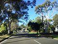 Engadine NSW 2233, Australia - panoramio (138).jpg