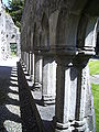 Ennis Abbey5.JPG
