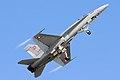 F18 Hornet - RIAT 2006 (2371917064).jpg