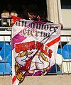 FC Liefering SV Horn 12.JPG