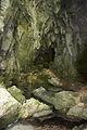 FR64 Gorges de Kakouetta66.JPG