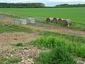 Farmland, Longparish - geograph.org.uk - 426471.jpg