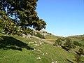 Feizor - panoramio - jim walton (5).jpg