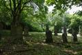 Feldatal Kestrich Juedischer Friedhof.png