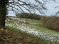 Field on Adcombe Hill - geograph.org.uk - 1196533.jpg