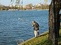 Fisher on Herastrau Park - panoramio.jpg