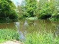 Fishing Pool - geograph.org.uk - 174010.jpg