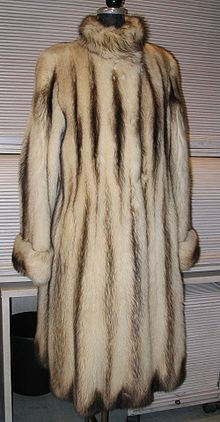 Fitch fur coat frontside.JPG