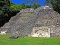 Flickr - archer10 (Dennis) - Belize-1043.jpg