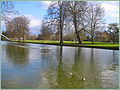 Flickr - ronsaunders47 - THE RIVER OUSE .BEDFORD .BEDS UK. 2 (1).jpg