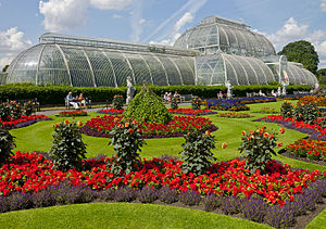 Flowers in front of the Palm House, Kew Gardens.jpg