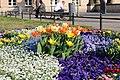 Flowers on Potsdam street 2 (April, 2018).jpg