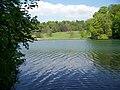 Fonthill Lake - geograph.org.uk - 792158.jpg