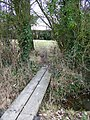 Footbridge, Batchmere's Farm - geograph.org.uk - 1748203.jpg